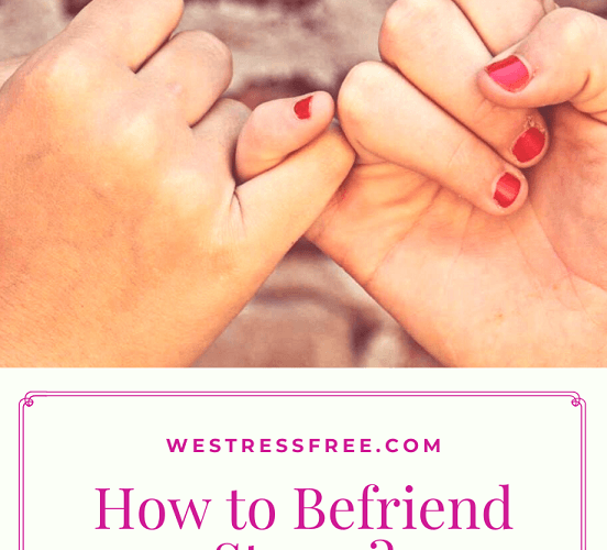 How to Befriend Stress? – Is It Possible?
