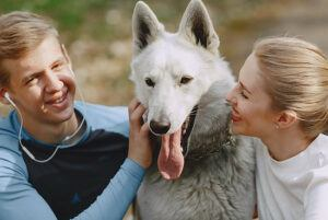 caressing-pets-can-reduce-stress