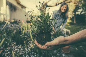 gardening-can-help-to-relieve-stress