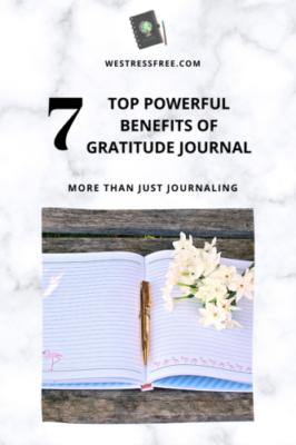 The Power of Gratitude Journal
