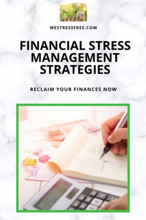 FINANCIAL STRESS MANAGEMENT STRATEGIES