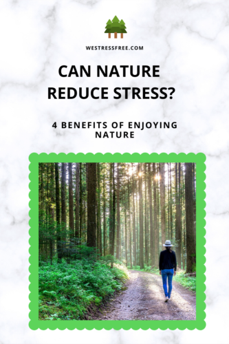 Can Nature Reduce Stress – 4 Benefits Of Enjoying Nature