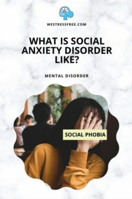 WHAT IS SOCIAL ANXIETY DISORDER LIKE?