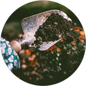Soil bacteria have anti-inflammatory effects for stress resistance