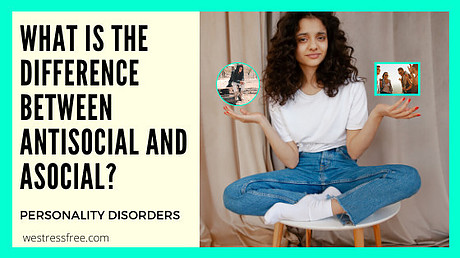 What Is The Difference Between Antisocial and Asocial?